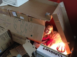 The epic box house with electrical supply and complex tunneling… AWESOME! and MESSY!